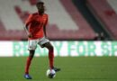 Southampton quer Florentino, do Benfica